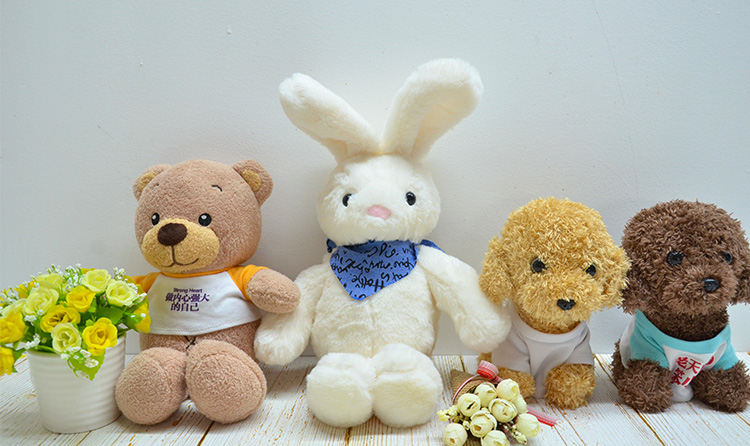 Rabbit With T-shirt-Pink-23CM