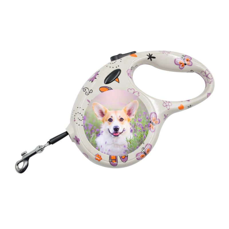Pet Leash-Small-Butterfly Pattern
