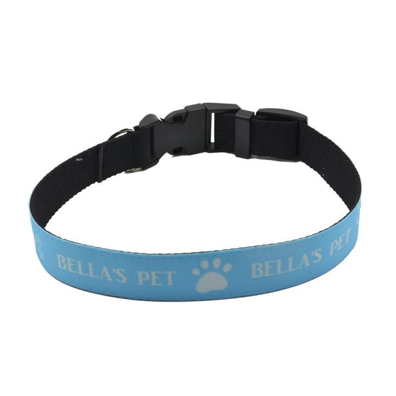 Adjustable Dog Collar-M