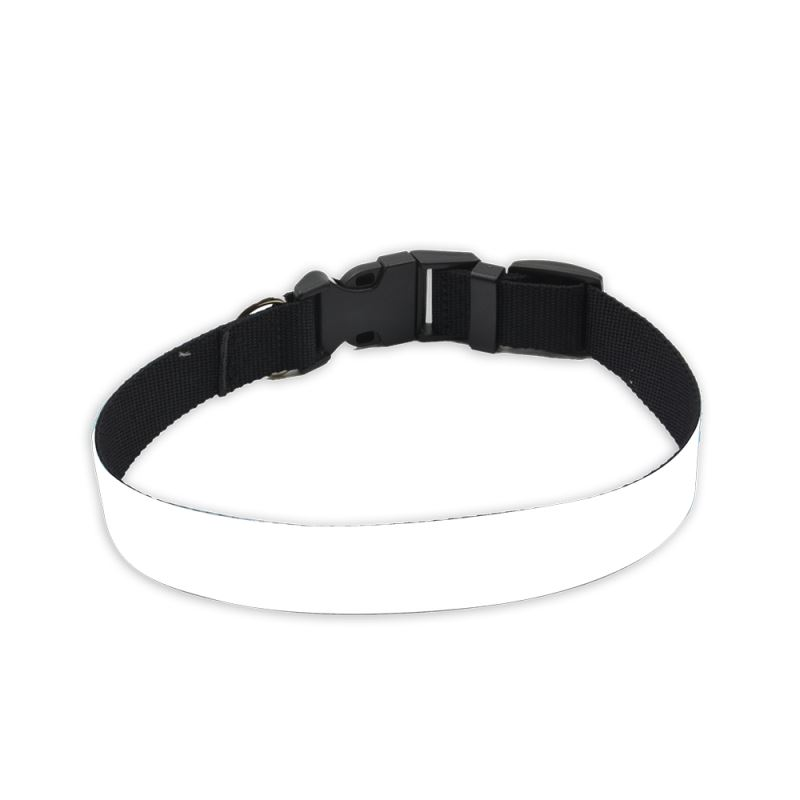 adjustable puppy collar