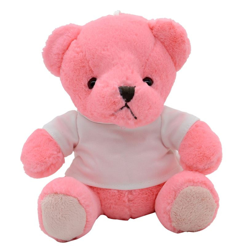 Pink Teddy Bear With T - shirt